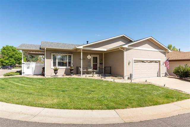 41 Curtis Court, Broomfield, CO 80020 (#8976550) :: The Dixon Group