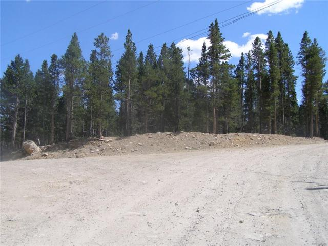 LOT 345 Alice Road, Idaho Springs, CO 80452 (#8976800) :: The DeGrood Team