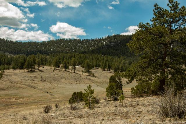 Camp Drive, Westcliffe, CO 81252 (#8978640) :: James Crocker Team