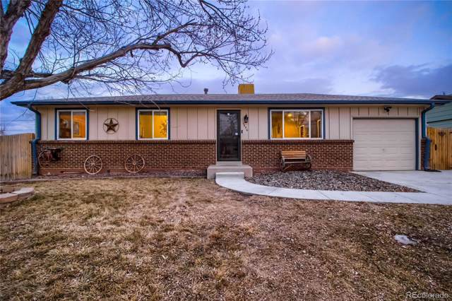 1556 S Field Court, Lakewood, CO 80232 (MLS #8979335) :: 8z Real Estate