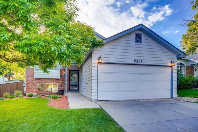 9501 Burlington Lane, Highlands Ranch, CO 80130 (#8980019) :: Wisdom Real Estate