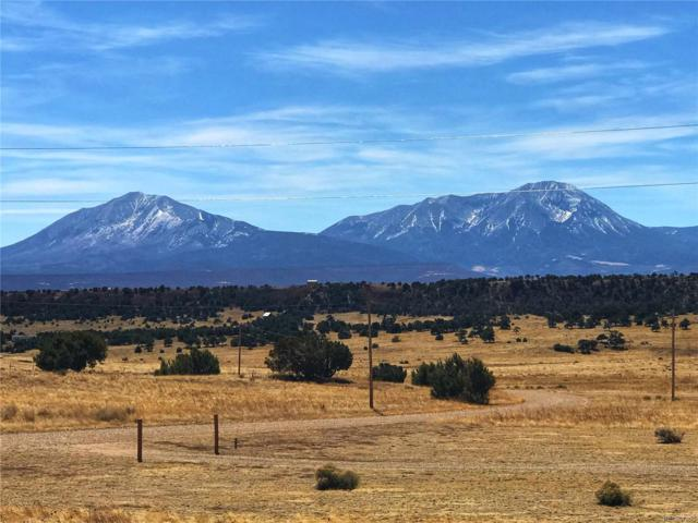 Lot 22 Comanche, Walsenburg, CO 81089 (#8981599) :: The Peak Properties Group