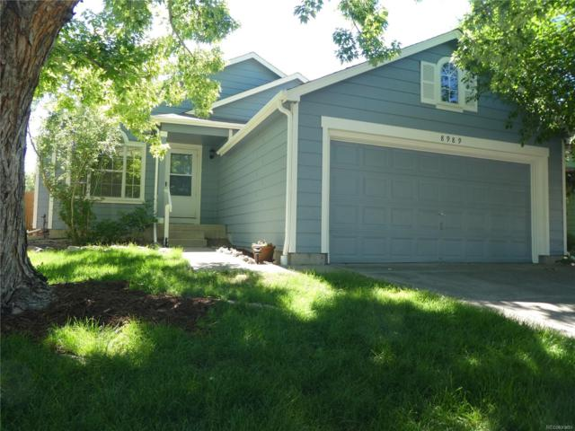 8989 Cloverleaf Circle, Parker, CO 80134 (#8981814) :: Sellstate Realty Pros