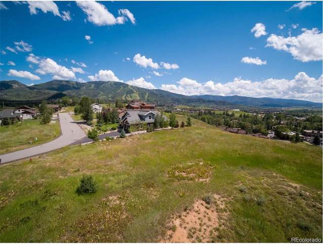 1184 Longview Circle, Steamboat Springs, CO 80487 (#8982047) :: Venterra Real Estate LLC