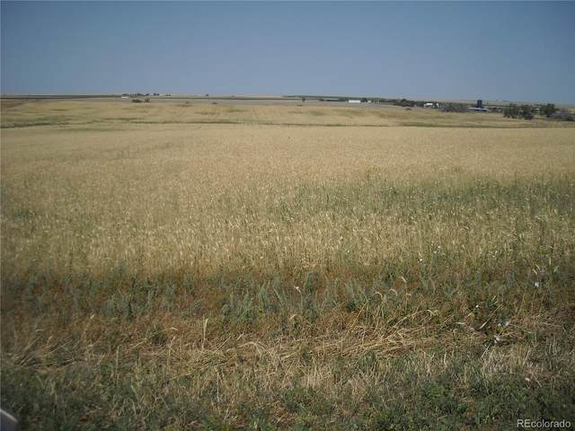 13073 Pass Me By Road, Strasburg, CO 80136 (#8982371) :: Finch & Gable Real Estate Co.