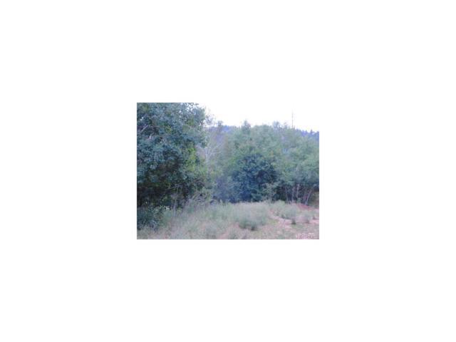 13479 S Firedog Way, Larkspur, CO 80118 (MLS #8987075) :: 8z Real Estate
