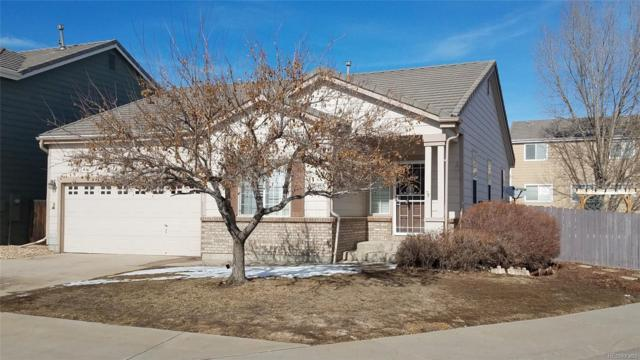 19413 E Hollow Creek Drive, Parker, CO 80134 (#8988482) :: The Heyl Group at Keller Williams