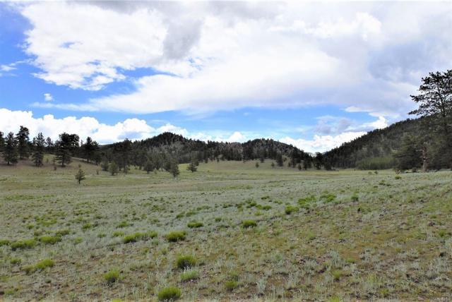 Lot 123 Antelope Lane, Guffey, CO 80820 (#8989096) :: The Griffith Home Team