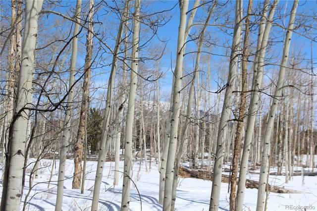 568 Dry Lake Road, Fairplay, CO 80440 (#8989375) :: iHomes Colorado