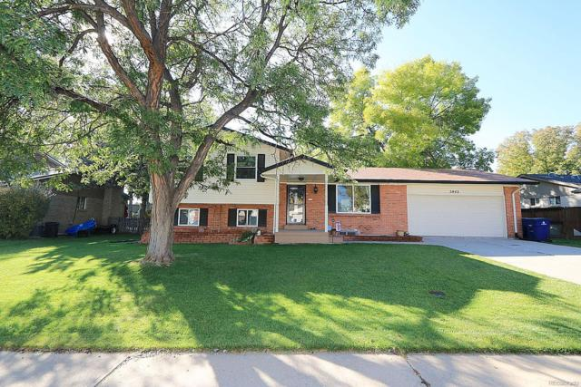 5942 W Maplewood Drive, Littleton, CO 80123 (#8989731) :: The DeGrood Team