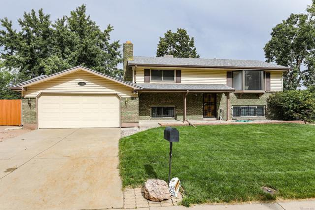 7713 Webster Way, Arvada, CO 80003 (#8994123) :: The City and Mountains Group