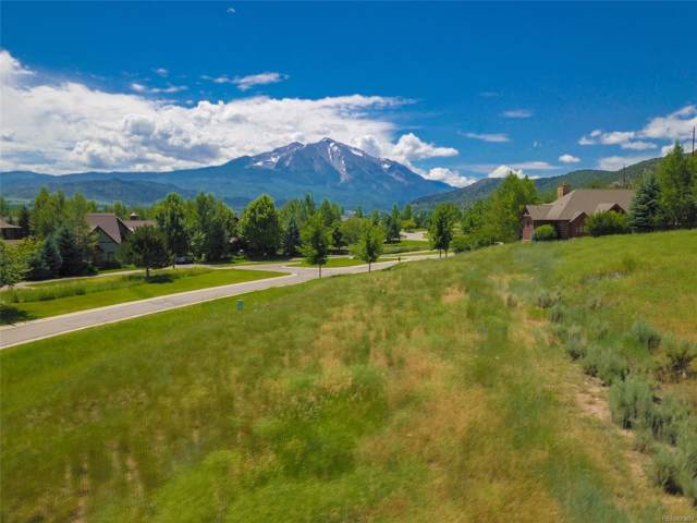 751 Perry Ridge Road, Carbondale, CO 81623 (#8994633) :: HomePopper