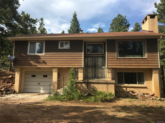 340 Old Sawmill Road, Bailey, CO 80421 (MLS #8995625) :: 8z Real Estate