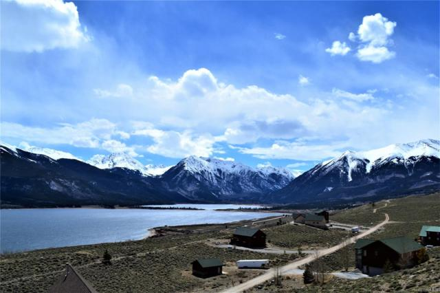 255 Mt Hope, Twin Lakes, CO 81251 (#8998652) :: The City and Mountains Group
