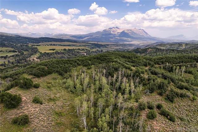 2555 County Road 265, Somerset, CO 81434 (#8999651) :: RE/MAX Professionals