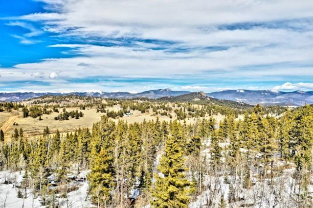 1486 Chief Trail, Como, CO 80432 (#9000082) :: Mile High Luxury Real Estate
