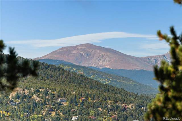 4955 S Indian Trail, Evergreen, CO 80439 (#9003946) :: The Colorado Foothills Team   Berkshire Hathaway Elevated Living Real Estate