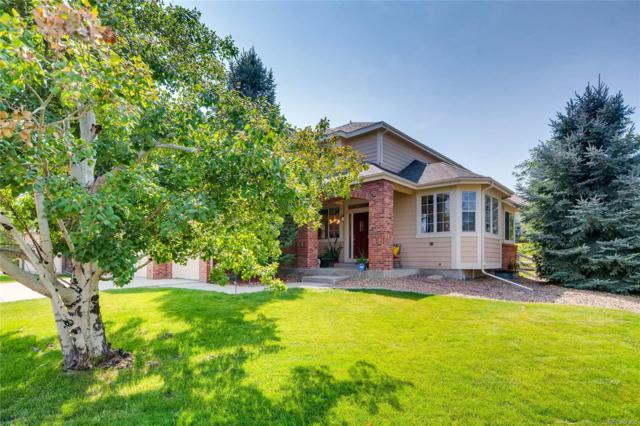 10388 Dunsford Drive, Lone Tree, CO 80124 (#9004524) :: Sellstate Realty Pros