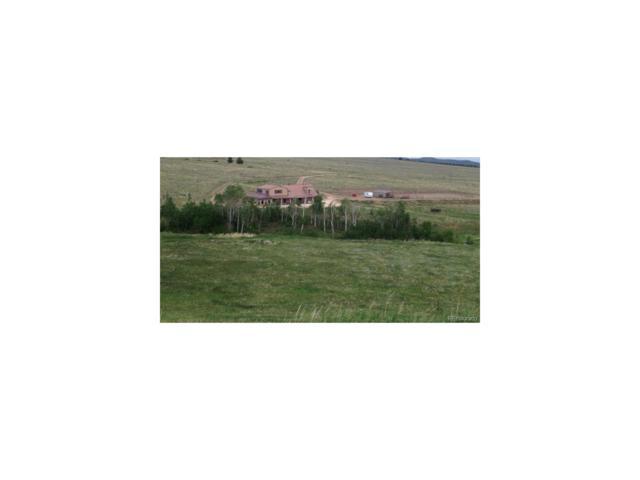1440 Co Road 172, Westcliffe, CO 81252 (MLS #9006481) :: 8z Real Estate