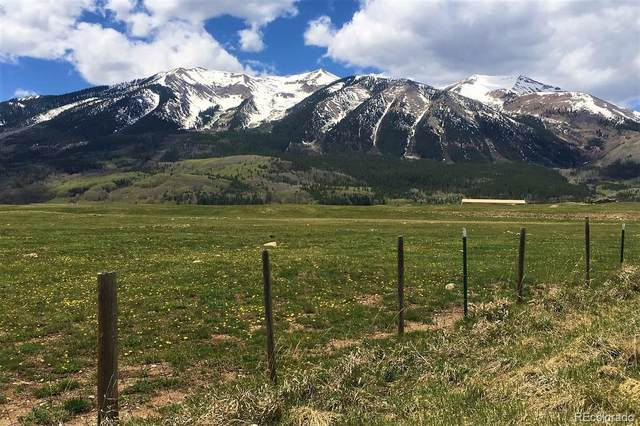 72 Appaloosa Lane, Crested Butte, CO 81224 (MLS #9008076) :: Neuhaus Real Estate, Inc.