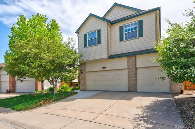 10686 Jaguar Point, Littleton, CO 80124 (#9009809) :: RazrGroup