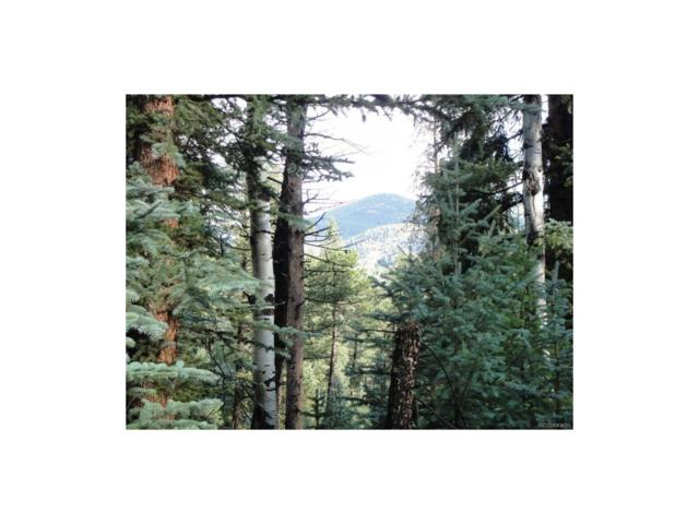 4561 Summit Trail, Evergreen, CO 80439 (MLS #9010481) :: 8z Real Estate