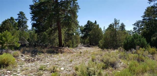30 Big Bear Road, Mosca, CO 81146 (#9011161) :: Mile High Luxury Real Estate