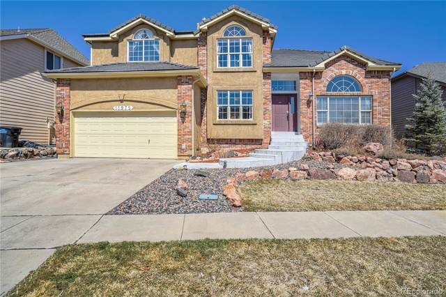11975 Hanging Valley Way, Colorado Springs, CO 80921 (#9011526) :: Wisdom Real Estate
