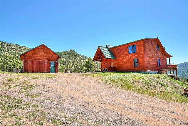 396-B Eagle Nest Trail, Guffey, CO 80820 (#9011991) :: Kimberly Austin Properties