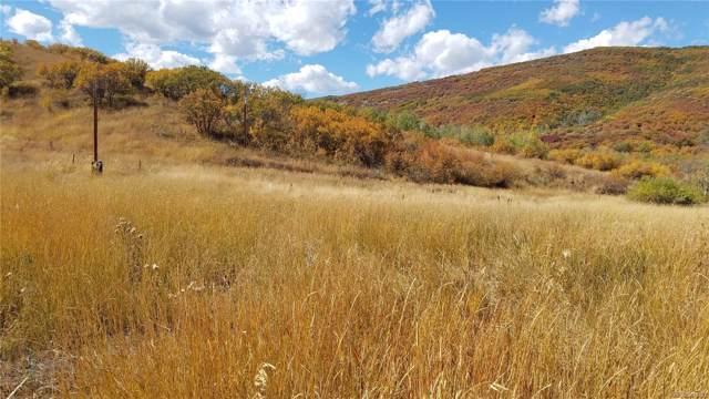 29390 Highway 131, Oak Creek, CO 80467 (#9014762) :: milehimodern