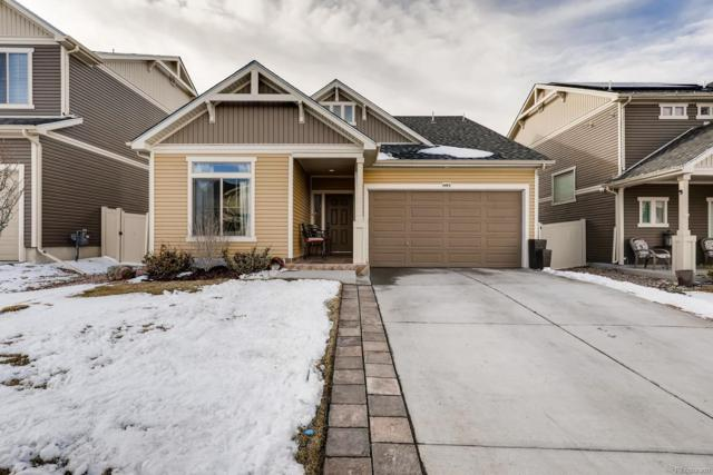 4445 Walden Court, Denver, CO 80249 (#9019074) :: The City and Mountains Group