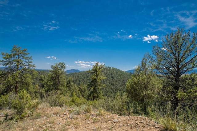 14433 Lot 6 Elk Creek Road, Pine, CO 80470 (#9019844) :: Kimberly Austin Properties