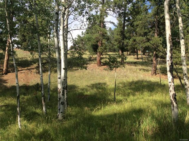 37 Antelope Circle, Florissant, CO 80816 (#9021474) :: The Tamborra Team