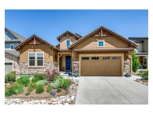 10610 Star Thistle Court, Highlands Ranch, CO 80126 (#9022525) :: The Peak Properties Group