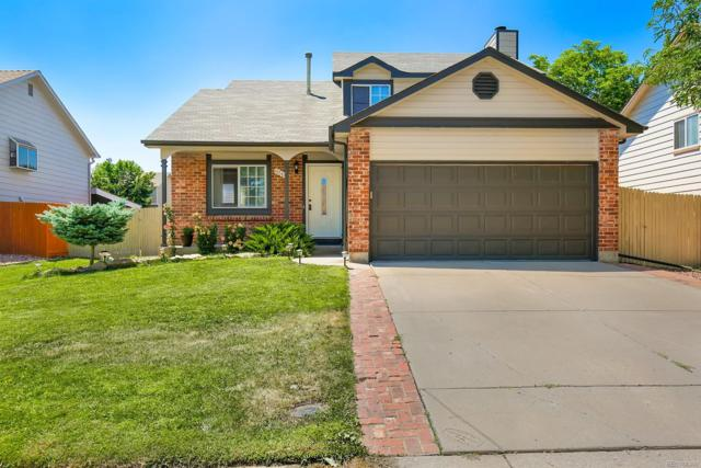 6041 S Quail Way, Littleton, CO 80127 (#9023437) :: The Griffith Home Team