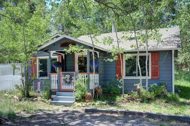 175 Beaver Lane, Evergreen, CO 80439 (MLS #9026728) :: Clare Day with LIV Sotheby's International Realty