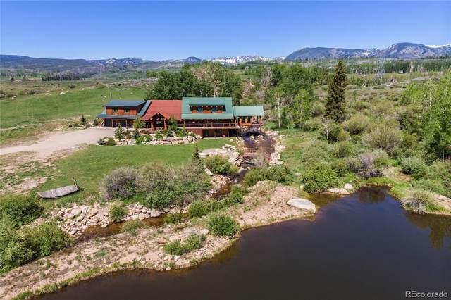 8017 County Road 24, Walden, CO 80430 (MLS #9029132) :: 8z Real Estate