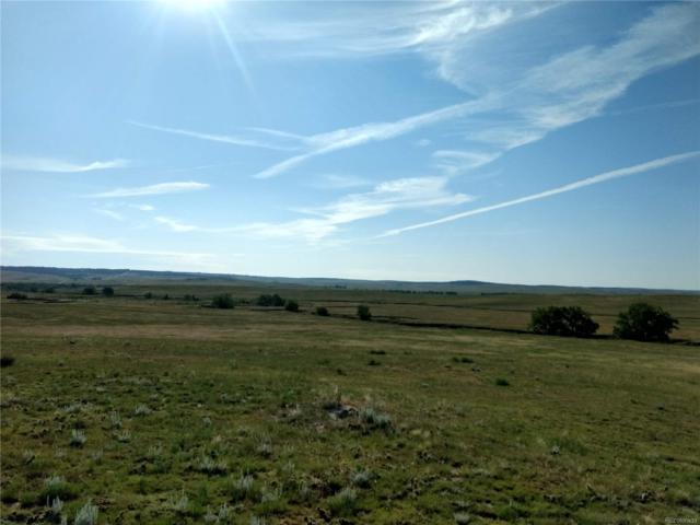 Lot 2 Fiddleback Ranch Circle, Kiowa, CO 80117 (#9029494) :: The Healey Group