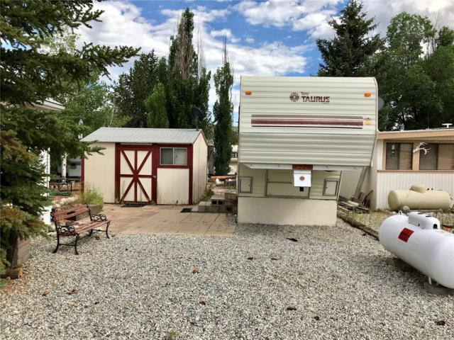 10795 County Road 197A #226, Nathrop, CO 81236 (#9032707) :: The DeGrood Team