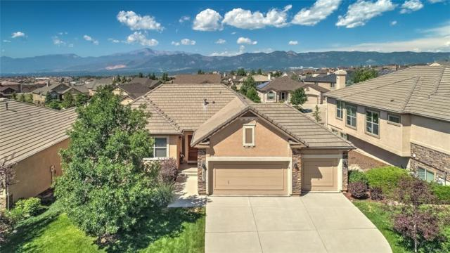 13834 Firefall Court, Colorado Springs, CO 80921 (#9037239) :: The Pete Cook Home Group
