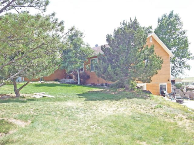 12000 Heidemann Avenue, Franktown, CO 80116 (#9039022) :: Colorado Home Realty