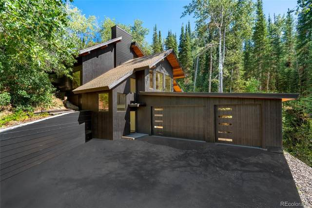 2310 Val Disere Circle, Steamboat Springs, CO 80487 (#9039324) :: The Healey Group