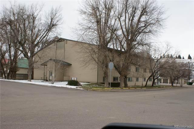 680 Water Street 1-19, Meeker, CO 81641 (MLS #9044099) :: 8z Real Estate