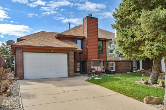 4900 W 88th Place, Westminster, CO 80031 (#9051418) :: 5281 Exclusive Homes Realty