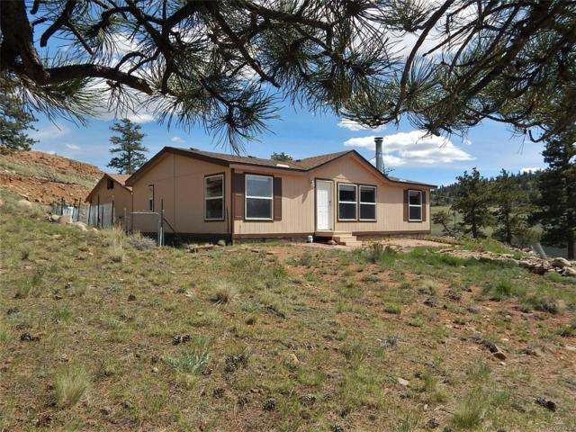 356 Crazy Horse Trail, Hartsel, CO 80449 (#9051664) :: The Heyl Group at Keller Williams
