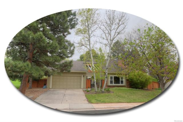 3430 E Easter Place, Centennial, CO 80122 (#9052355) :: The DeGrood Team