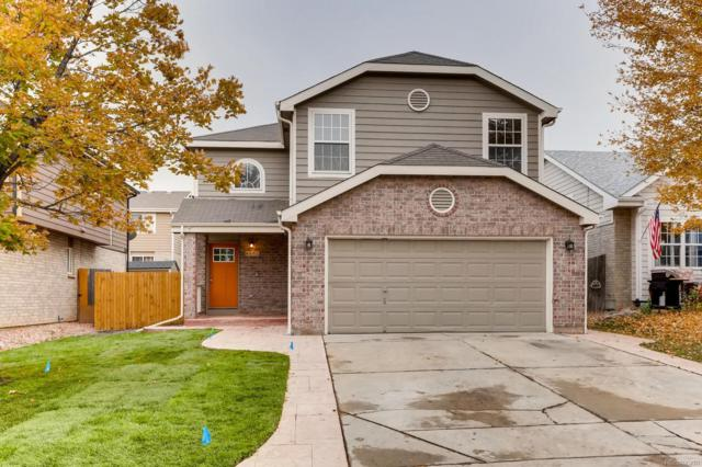 6662 E 123rd Drive, Brighton, CO 80602 (#9053717) :: The Healey Group