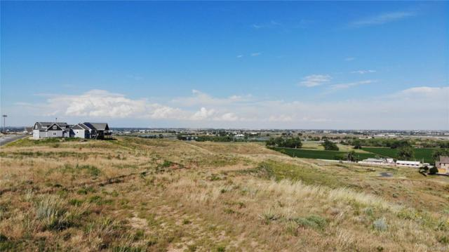 10000 E 138th Place, Brighton, CO 80602 (#9057266) :: The Heyl Group at Keller Williams