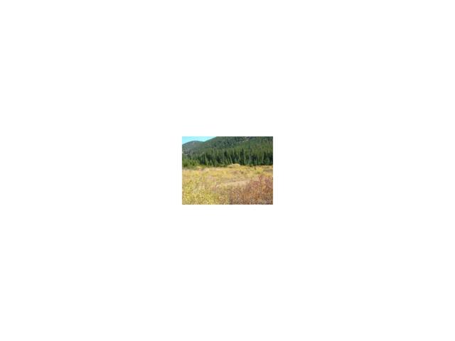 Lot 37 Silver Creek Road, Idaho Springs, CO 80452 (MLS #9059531) :: 8z Real Estate