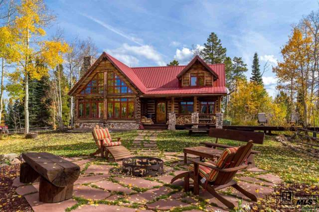 8925 Bearpaw Trail, Yampa, CO 80483 (#9064499) :: The DeGrood Team